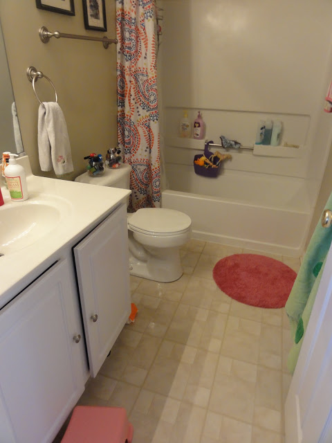 Again like the master bath, I just gave up in here.