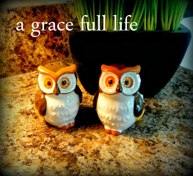 Cute owl pepper and salt shakers