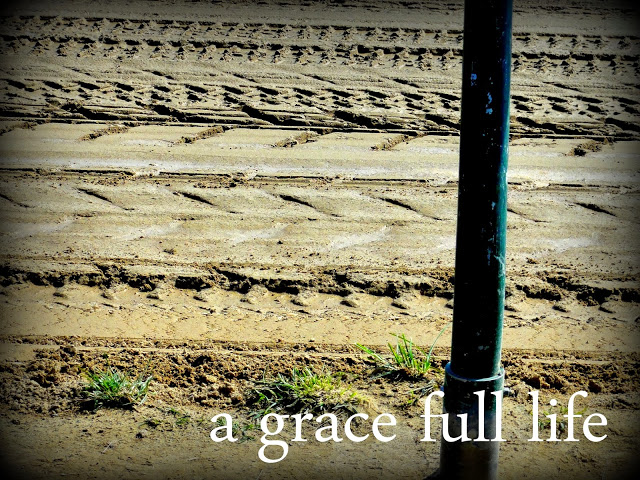 the mud at Churchill Downs in Louisville
