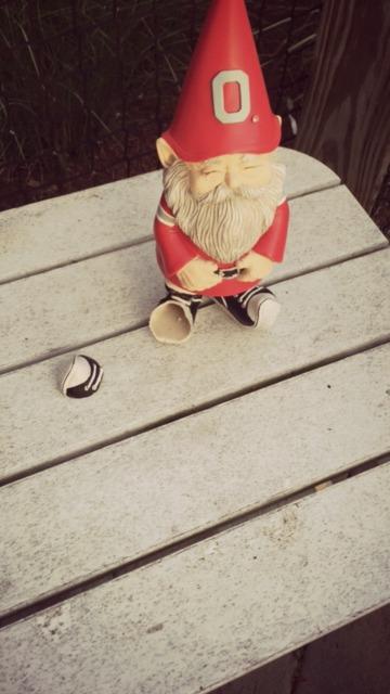 buckeye gnome broken