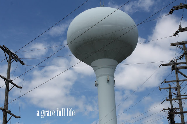 Save Ferris Water Tower 2015