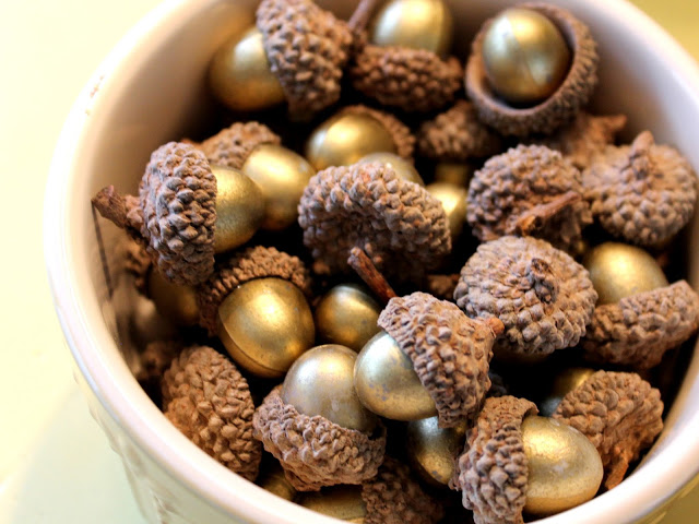 Acorns in a bowl