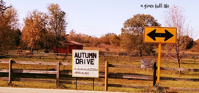 Autumn Drive McHenry County Illnois