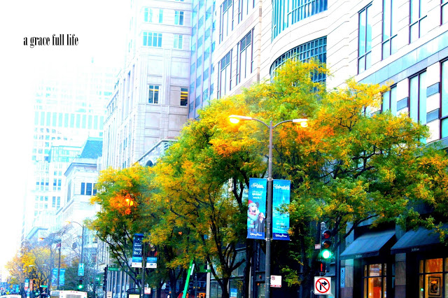 Fall on Michigan Ave Chicago