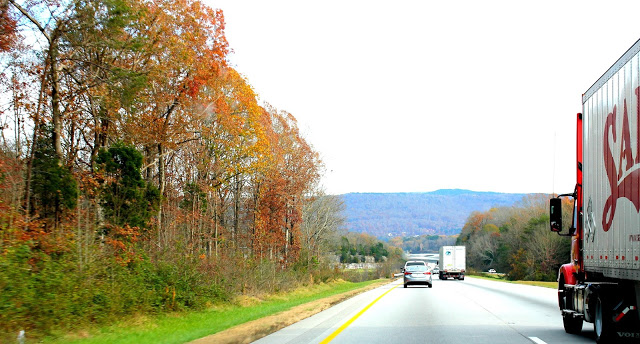 On the road to Tennessee for Thanksgiving.