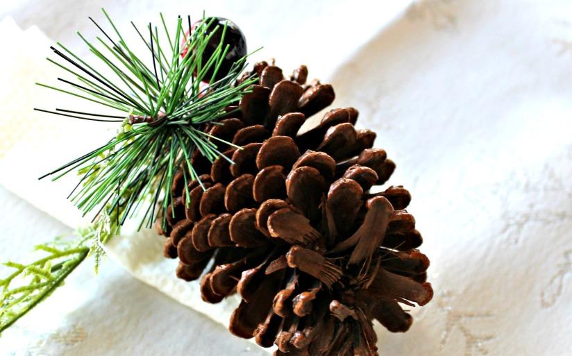 Dollar General, Christmas, Mardi Gras, shop. ad, napkins, Christmas, Holiday Table