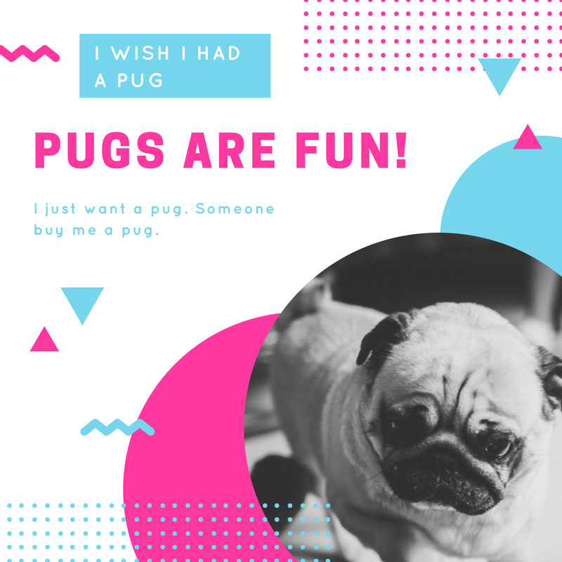 Creating Idiotic Canva and Pic Monkey Graphics Is Why I'll Never Get a Million Followers