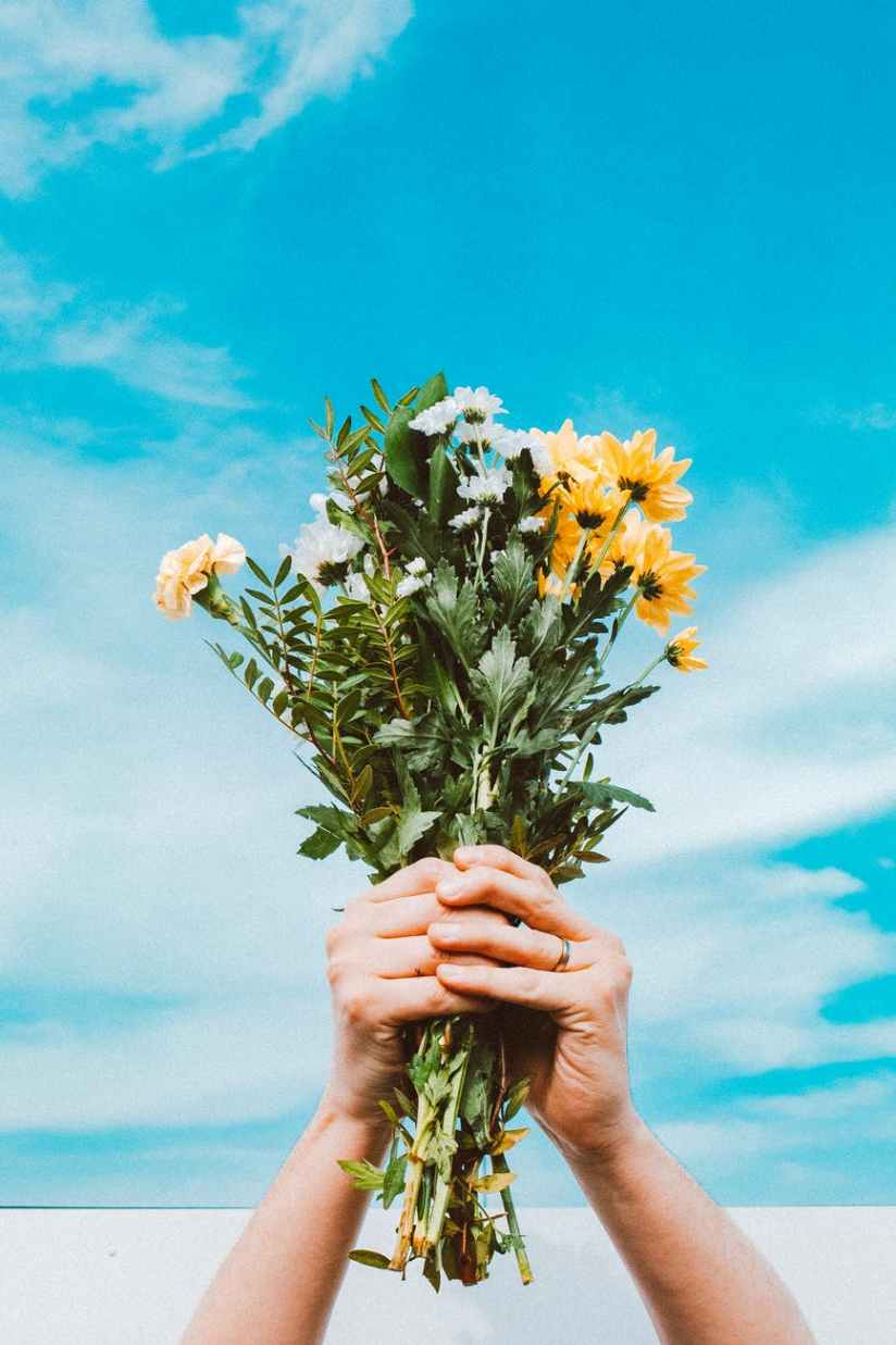 person holding yellow and white flowers